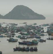 Du lịch Cát Bà - khám phá vẻ đẹp làng Chài