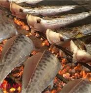 cá thu nướng cửa lò